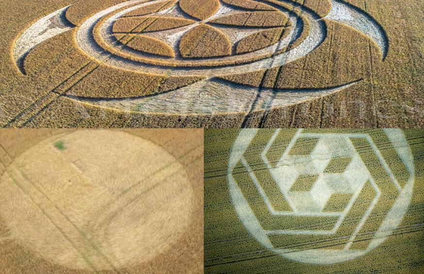 latest-crop-circles