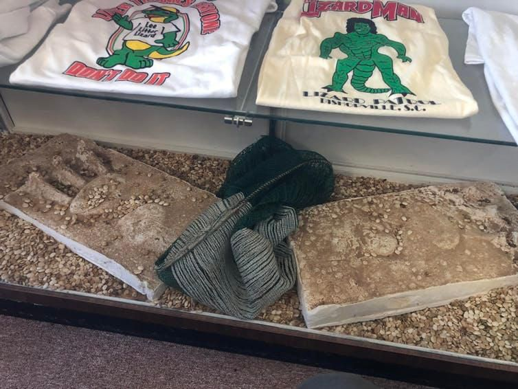 Plaster Lizard Man prints and T-shirts on display at the South Carolina Cotton Museum.