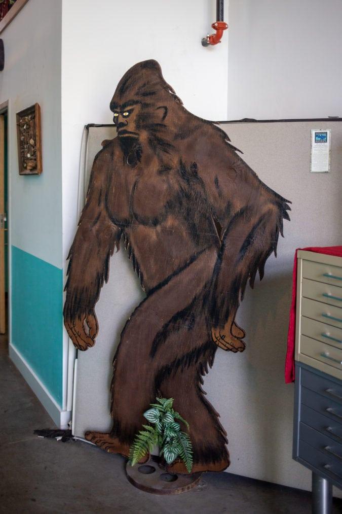 bigfoot inside the cryptozoology museum